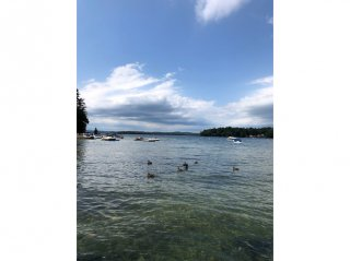 Lake Winnipesaukee Vacation Cottage Rental - Moultonborough, NH